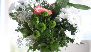 11. ARI Flowers IMG_7102