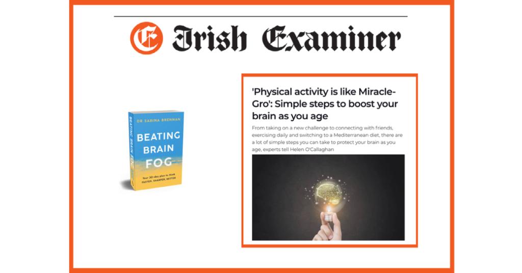 Irish Examiner Clip